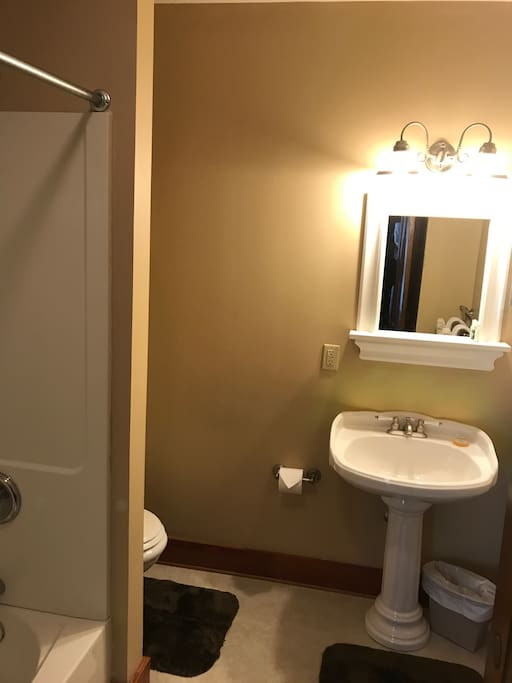 Large Private Bathroom with Tub and Shower
