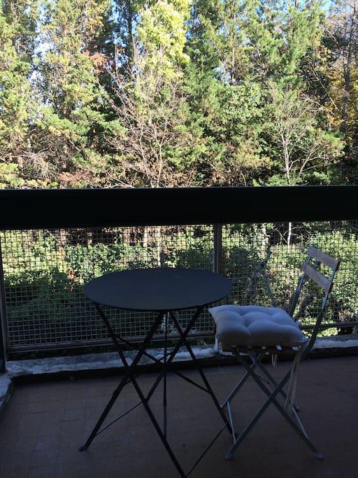 Terrasse attenante à la chambre vue jardin