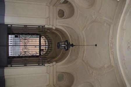 Loft nel centro di Torino - Torino