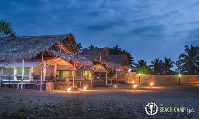 The Beach Camp - Yala - Kirinda, Yala - Telt