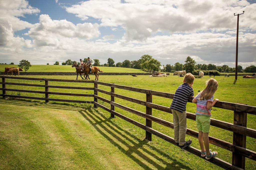 Our home is situated on a 100 acre award winning traditional farm