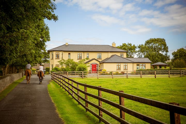 Farm stay 6 mile to Shannon Airport - Newmarket on Fergus - Bed & Breakfast