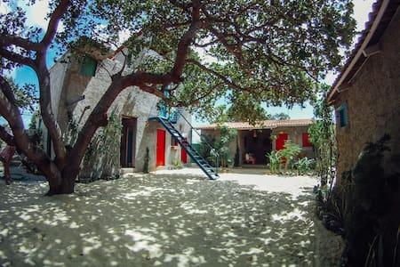 Vila Miguelito 2