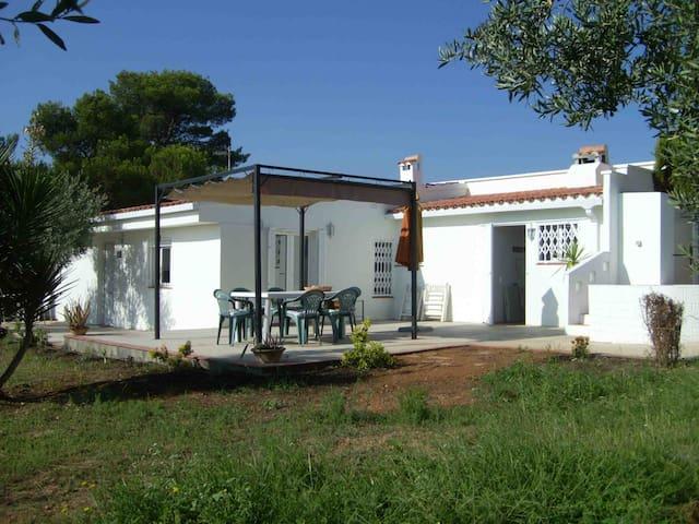 casa el jasmin - Vilamarxant - Chalé