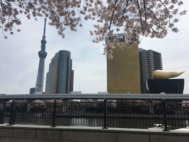 New house in good location. - Sumida - Apartment