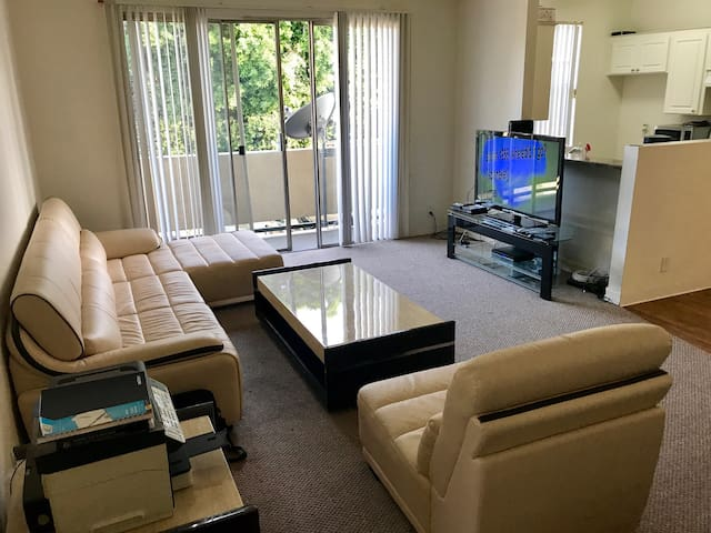Spacious Large Private Bedroom in a very nice apt!