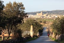 View of Porreres. Do you like cycloturism? Porreres is the best choice !