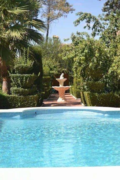 Zona piscina + jardines