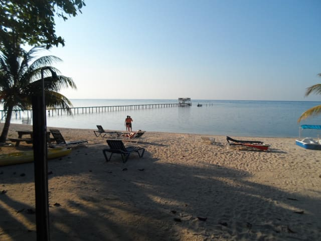 Ocean Front,Diving ,Snorkeling,Fishing,Affordable - Sandy Bay - Flat