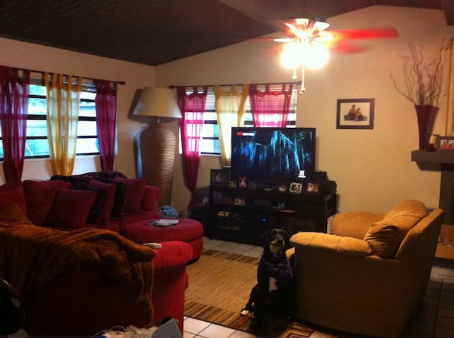 St Pete Pool Home, close to beaches - St Petersburg - Hus