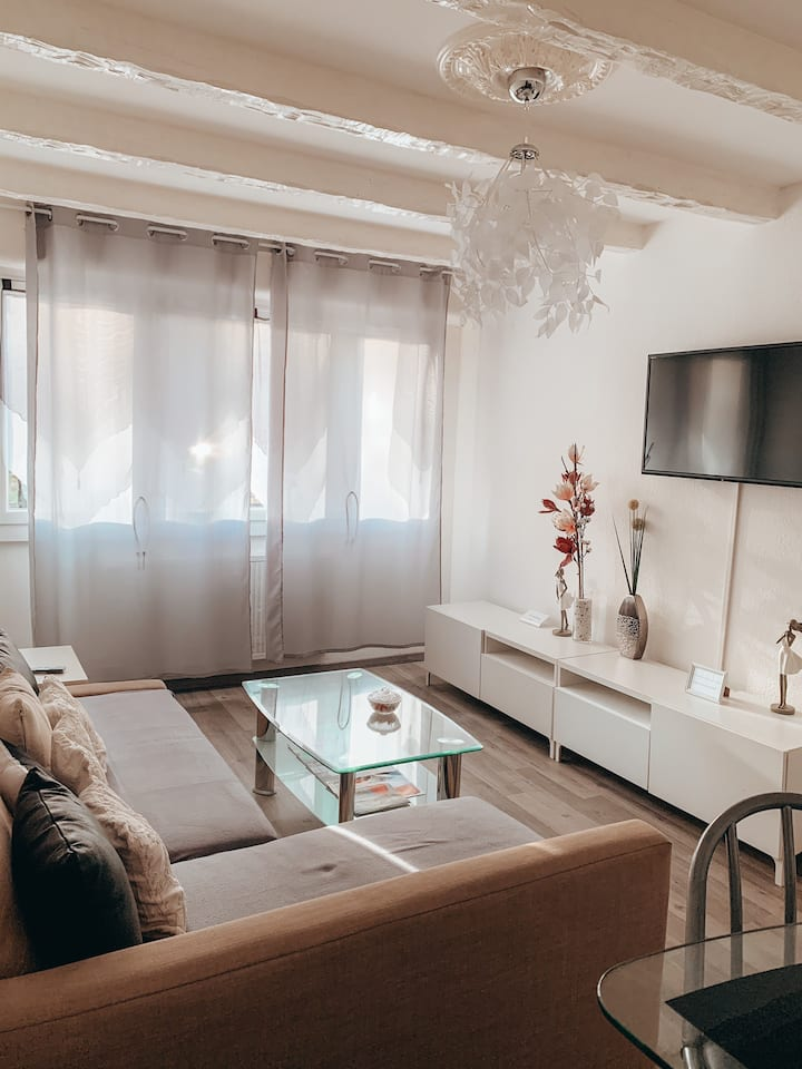 Premium Apartment Basel Airport 45m2