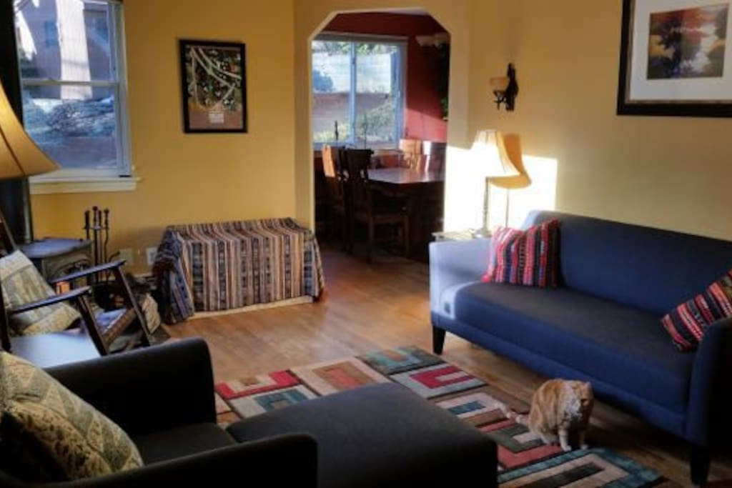Living Room (with Hoodoo the cat)