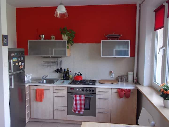Studio z aneksem kuchennym w zielonej okolicy