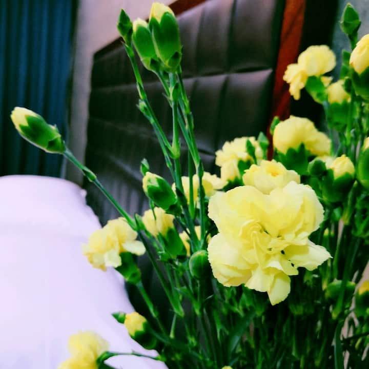 【桂林山下】溧阳 紧邻涵田半山温泉,天目湖景区,5号大床房