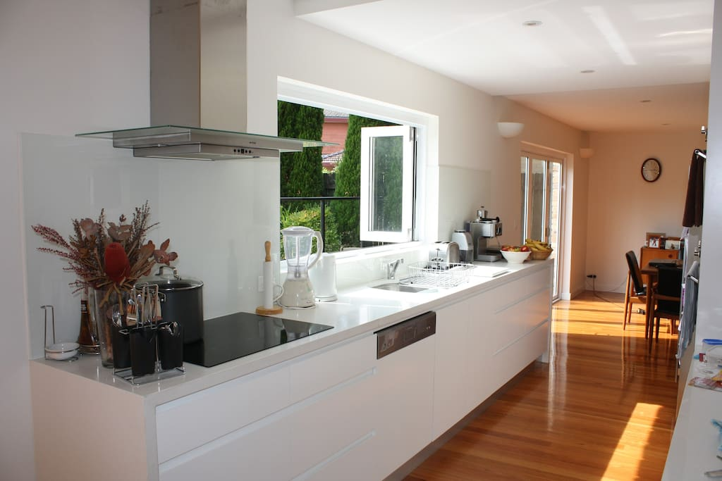 Kitchen with induction stove, dishwasher, blender, coffee machine and other appliances
