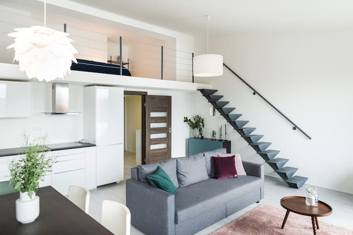 Gallery Apartment With Terrace