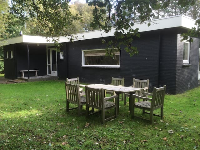 Holliday house Schiermonnikoog - Schiermonnikoog - Cabana