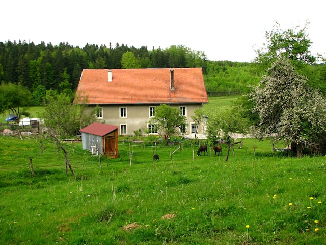 Bed and breakfast in Jura mountains - Arc-sous-Cicon - Apartamento