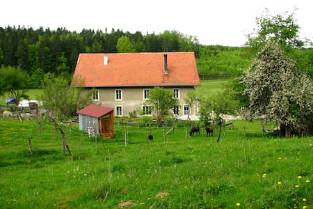 Bed and breakfast in Jura mountains - Arc-sous-Cicon