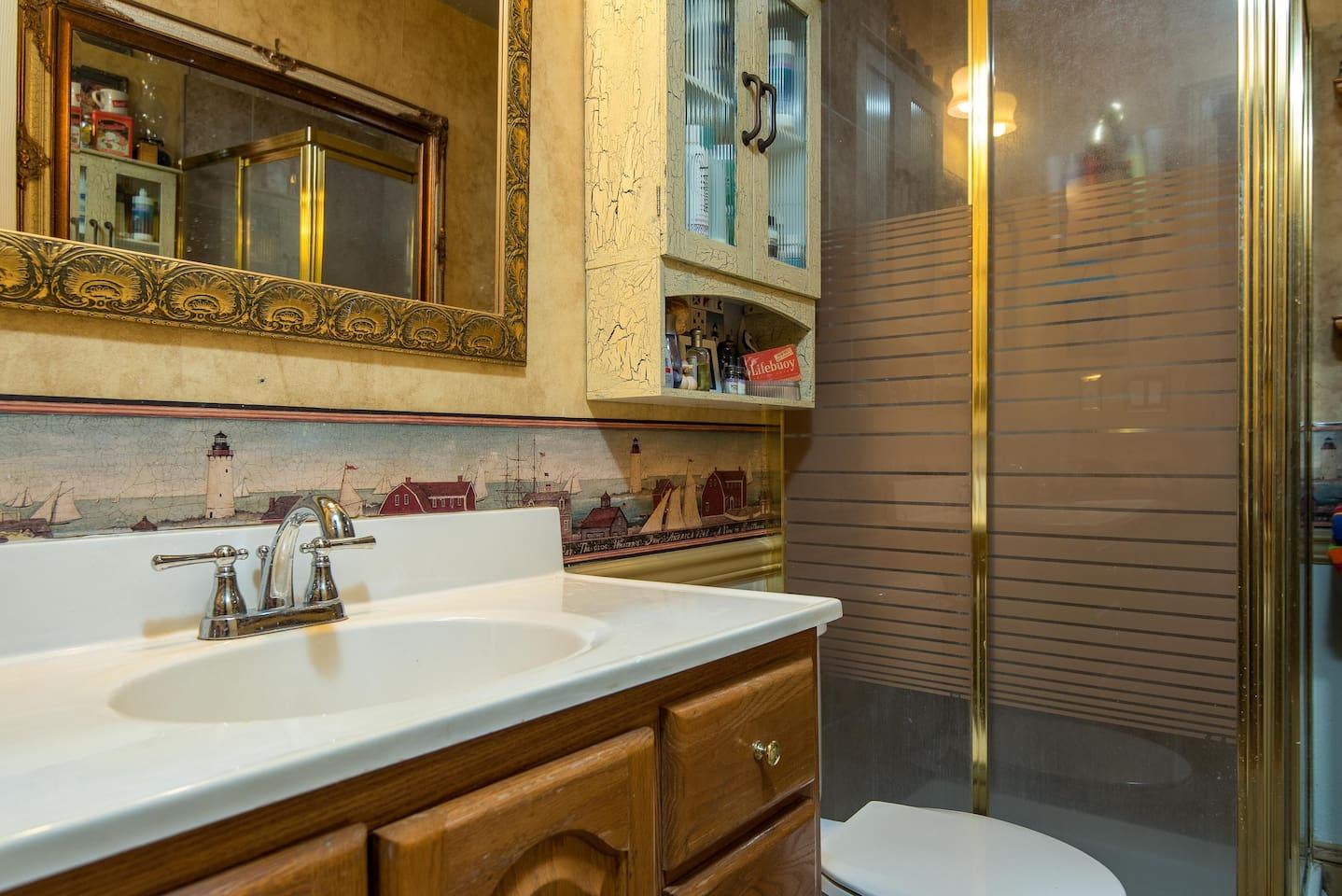Guest bathroom view