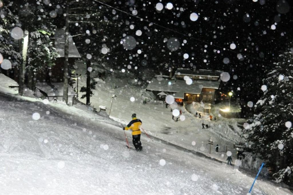 Our beginners ski trail