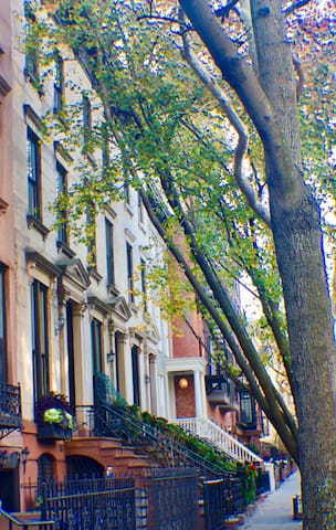 Our gorgeous street in Brooklyn Heights