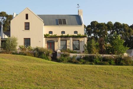 Luxury winelands living - House