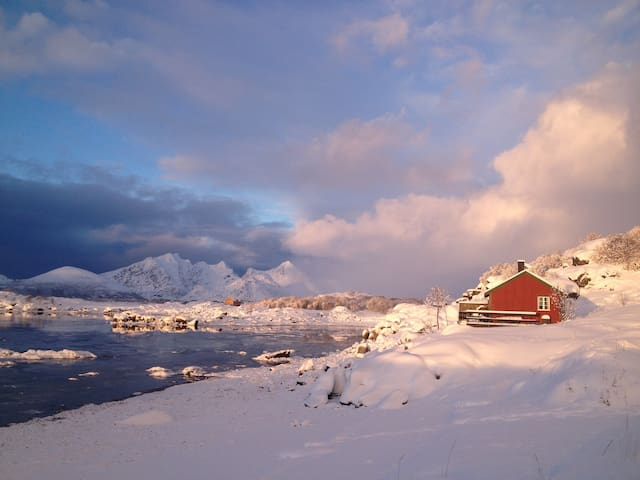Cottage in center of Lofoten. WiFi. - Leknes - กระท่อม
