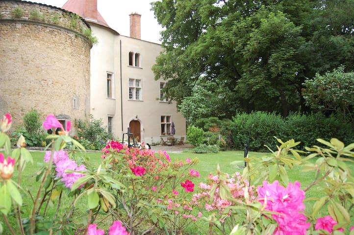 chambre CHATELAINE - Meurthe-et-Moselle - Castillo
