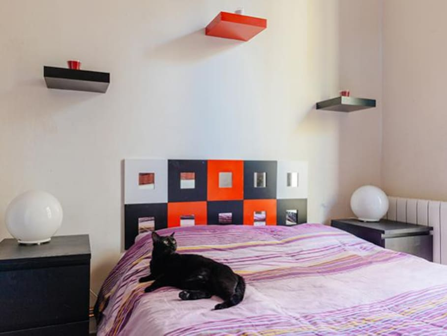 Chambre double sants plaza espa a happy cats Chambre a barcelone
