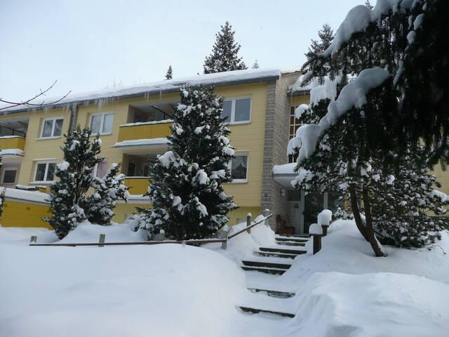 Ferienwohnung Luzie - Sankt Andreasberg - Apartment