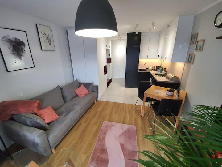 Przytulny Apartament Soft Loft Przedmiejski