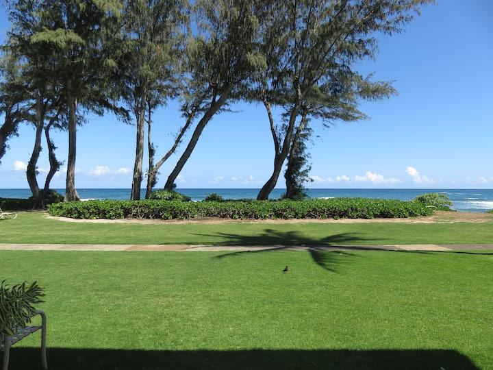 Kauai Direct Oceanfront Condo #131