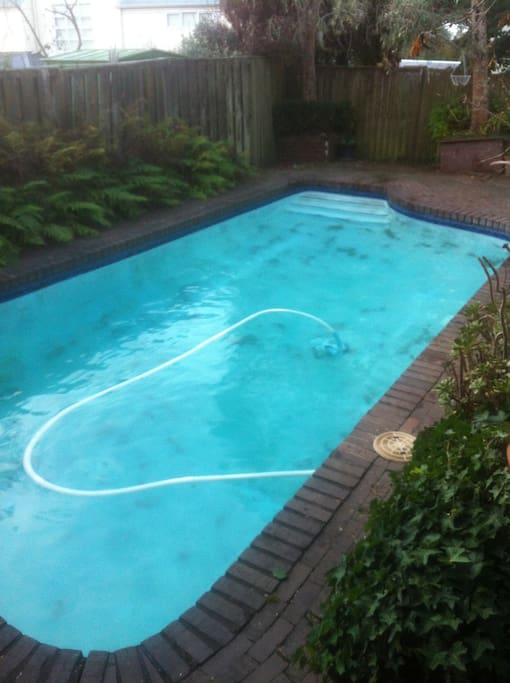 Kohimarama Beach Swimming Pool House Houses For Rent In Auckland Auckland New Zealand