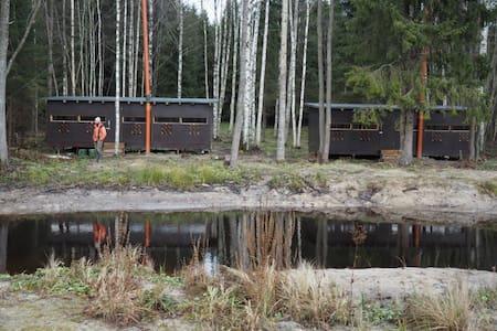 Brown Bear and Wildlife Watching Hide