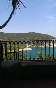 house with beautiful view  - pugnochiuso - Vieste - Hus