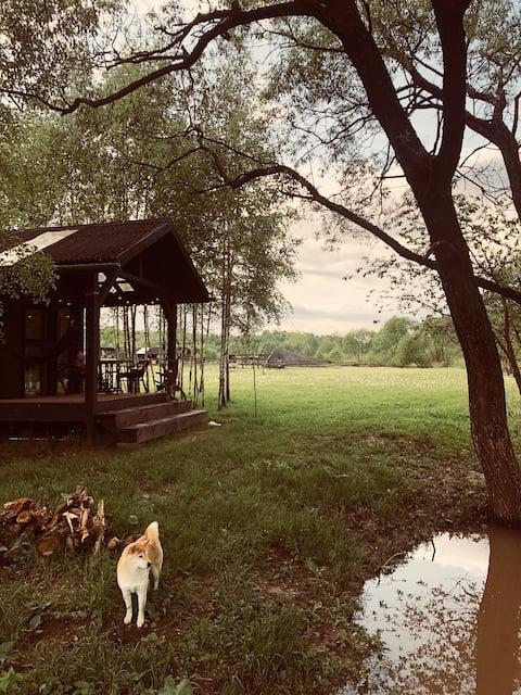 Pond Beme的房子