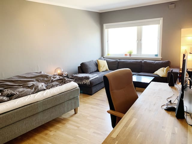 Central appartment, spacious and bright.