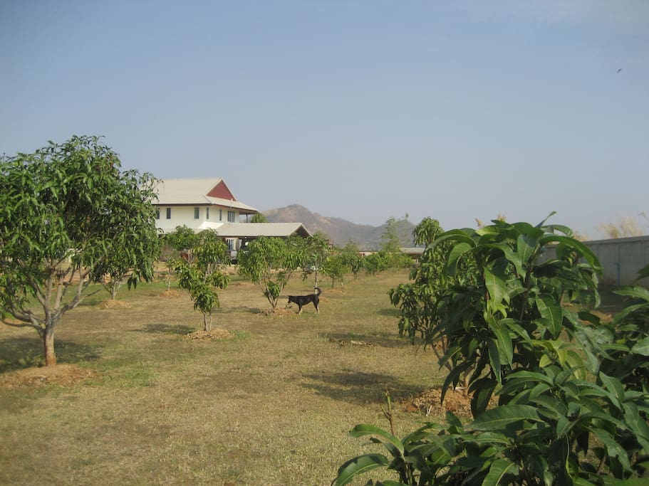 View of the land