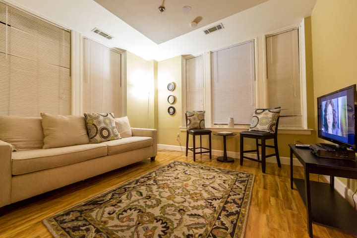 Furnished 2 BR in Heart of Downtown