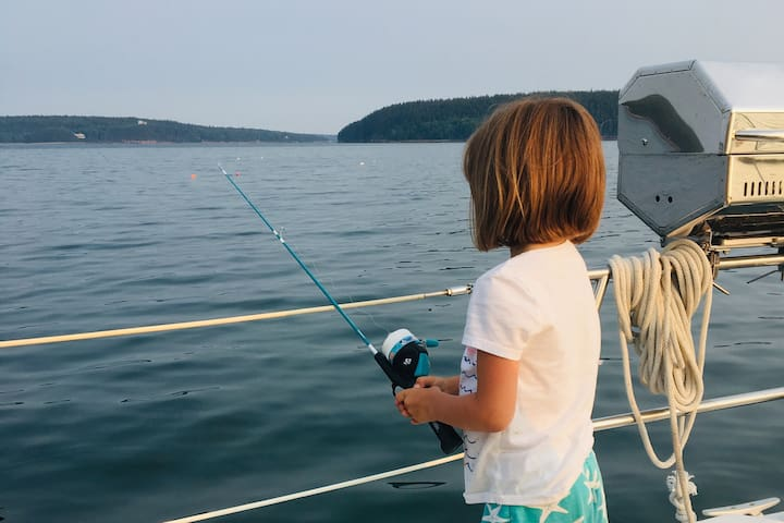 Try Mackerel fishing!