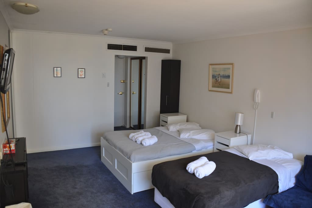 The apartment contains 1 queen bed, 1 single bed and double sofa bed