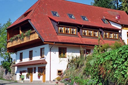 Biohof Herrenweg 4404.1 - Schiltach - Apartment