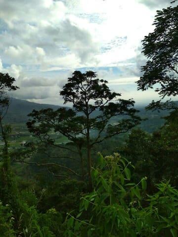 Home and traveling minangkabau tradition
