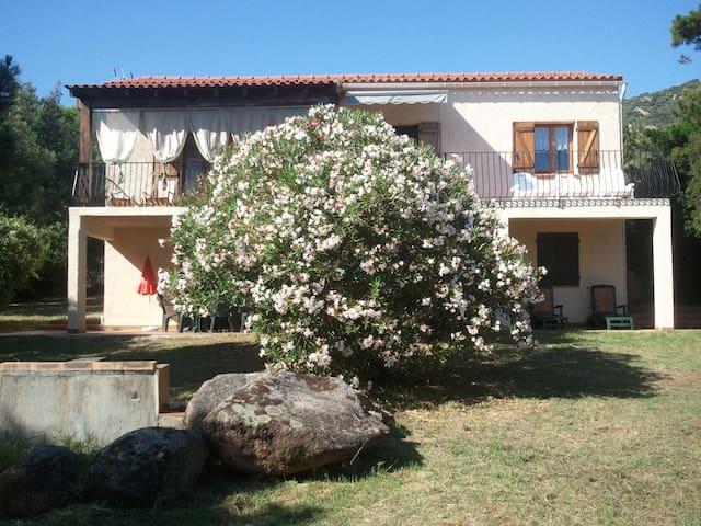Villa dans grand jardin à 50 mètres de la plage. - Olmeto - Apartment