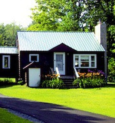 Adirondack Pines Cabin