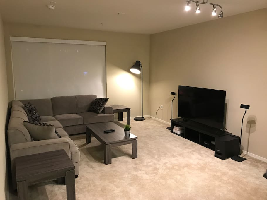 Bose and 60inch 4K entertainment center
