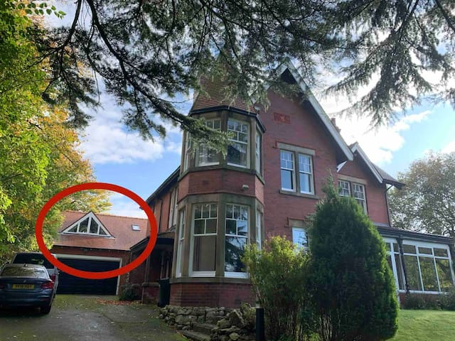 Netherdene - large room with private entrance