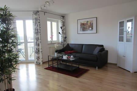 Modern-ruhig-zentral-WLAN-in DKB - Dinkelsbühl - Wohnung