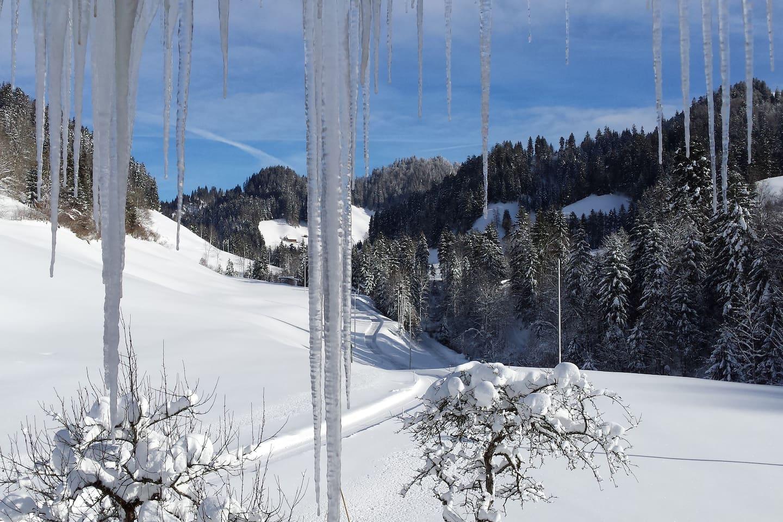Winterwonderland! Traumhafte Aussicht vom Balkon der Ferienwohnung auf die verschneiten Emmentaler Hügel.